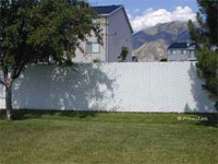Privacy Link - Chain Link Fence